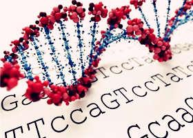 2022年中国基因测序市场可达183亿
