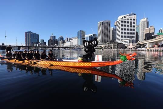 mac:Users:momo520:Desktop:在迎接端午节的到来,澳洲华人王娇娇在天猫上购买一艘来自杭州千岛湖的龙舟行驶在澳洲悉尼情人港2.JPG